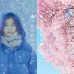 自身が生きる場所とは、映画『リトル・フォレスト冬・春』感想レビュー
