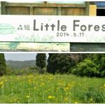 田舎で生きるとは、映画『リトルフォレスト 夏・秋』感想・レビュー