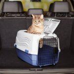 安さより強度が大事、猫用キャリーバック(ケース)のおすすめ&比較